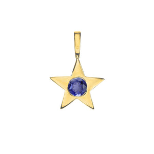 Matte Gold Vermeil Star Birthstone Charm - September / Iolite