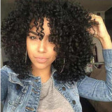 Afro Curly Hair Wig/Free Shipping