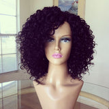 Wigsfox 10  Curly Wigs For African American Women The Same As The Hairstyle In The Picture