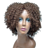 Wigsfox 8 Short Wigs For African American Women