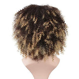 Curly Wigs for Black Women Short Afro Wigs Kinky Curly Style Hair Synthetic Wig