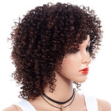Inclined Bang Gradient Ramp Small Curl Wig/Free Shipping