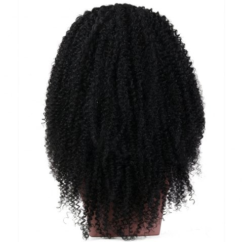 Long Kinky Curly Haircut Synthetic Lace Front Wig/Free Shipping