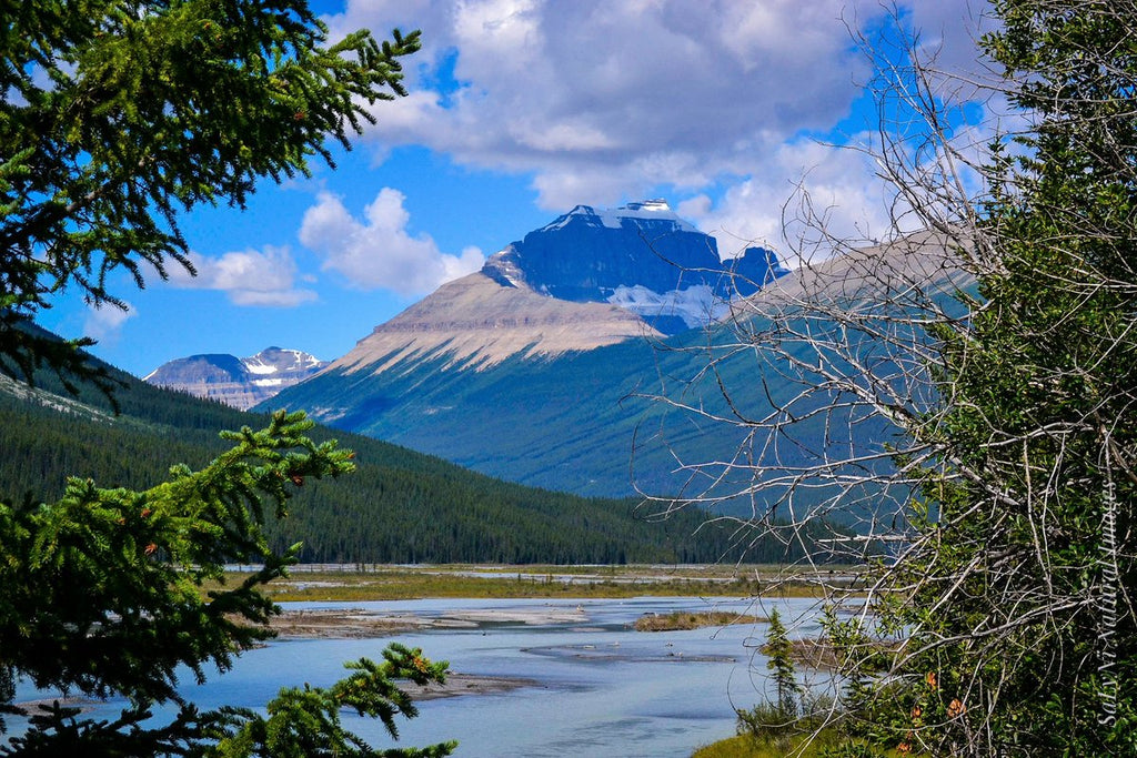 Icefields Parkway Banff National Park, Canada by Sandra Nicol @tennis45luv