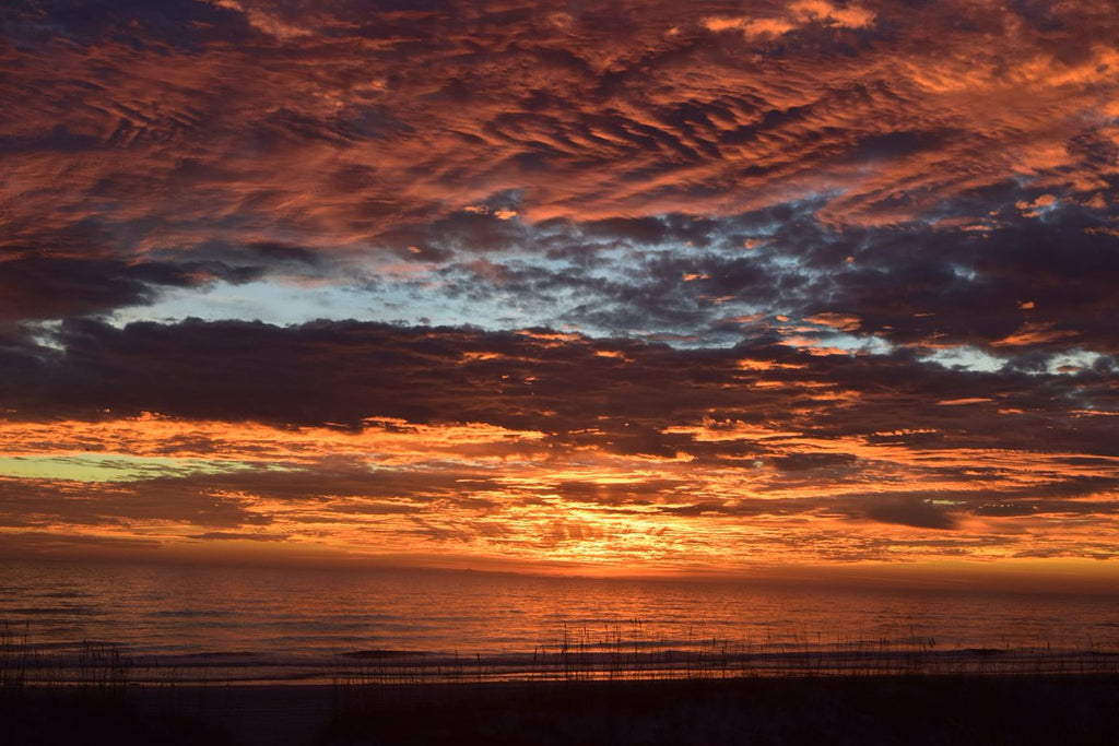 Winter dawn at Jax Beach by D Malone McMillan @EzekielANovel