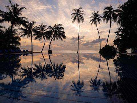 2nd Place Reflection in the infinity pool at Meeru Island, Maldives by Gill Prince @GillPrincePhoto
