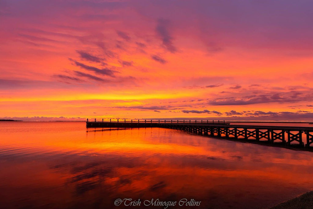 3rd Place Mastic Beach, NY by Trish MinogueCollins @TrishMinogPhoto