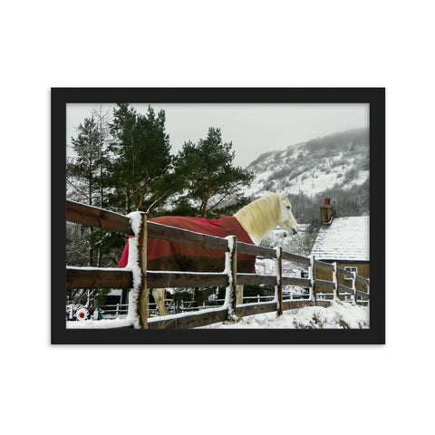 Red Coated Horse - Keeping Warm in the Snow - Framed Print by Mark Boardman