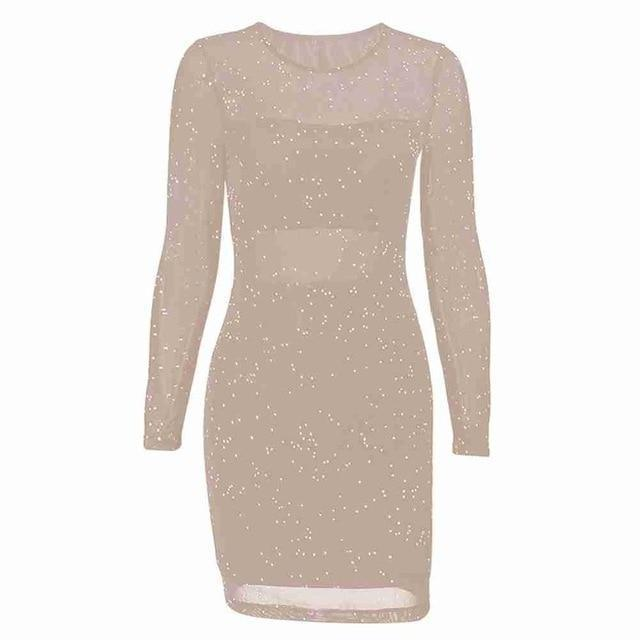 Kureas Mesh Sequin Dress Women Winter Autumn Long Sleeve Bodycon Night Club Perspective Sexy Lace-Home-Kureas Official Store-Beige-S-EpicWorldStore.com