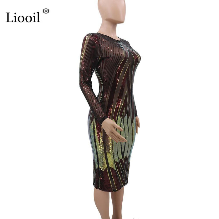 Liooil Sequin Print Sexy Mesh Bodycon Midi Dress Women 2020 Long Sleeve O Neck See Through Night-Home-Liooil Official Store-Red-S-EpicWorldStore.com