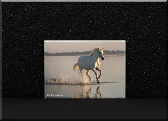Magnet Cheval Camargue