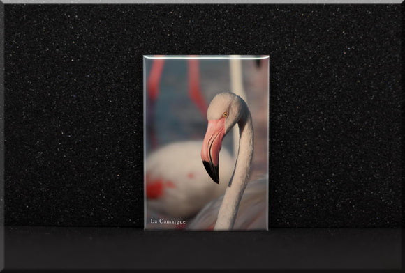Magnet Portrait de Flamant rose #1