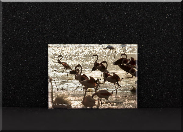 Magnet Flamants roses dans le couchant