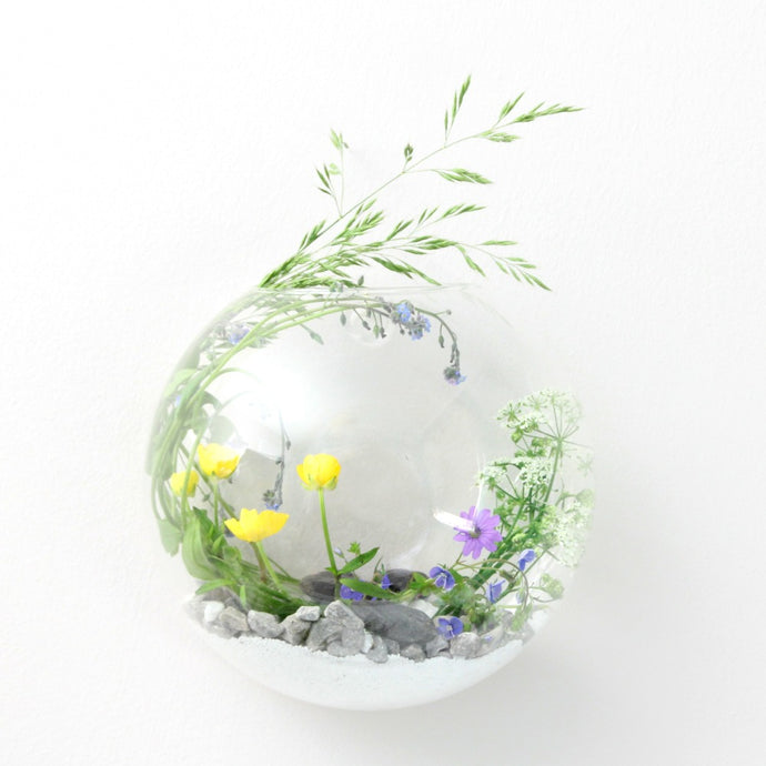 Wall hung glass terrarium with wild flowers