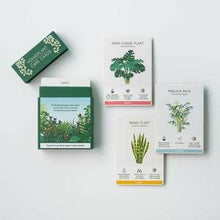 Load image into Gallery viewer, Houseplant Care Cards