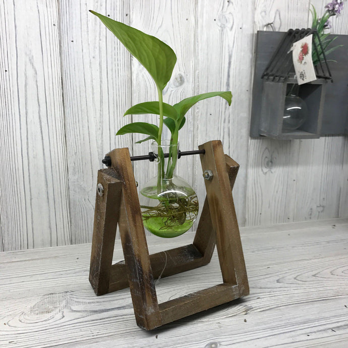 Industrial Lab Pot Vase - Single
