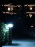 SG9095 | Solar LED Garden Light