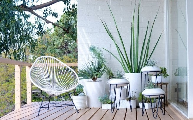 White Mid Century and Modern Ceramic Planters For The Patio