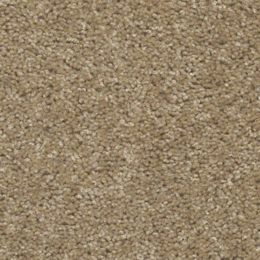 Shaw Carpet Style Striker Carpet Vidalondon