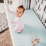 Dream Cotton Crib Mattress