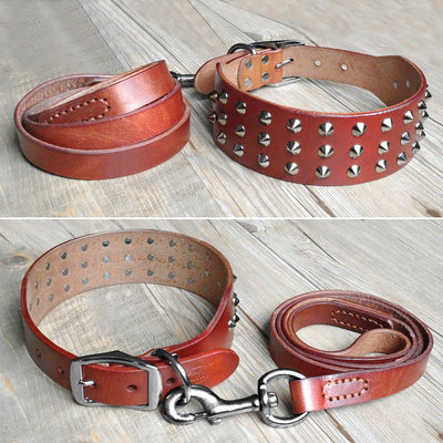 Leather Dog Collars Leash Set