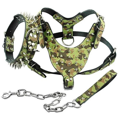 Dog Harness Leather Collar and Leash Set
