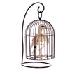 Halloween Decoration  Skeleton Bird Cage Plastic Crow