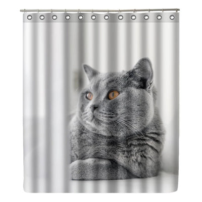 Shower Curtains Cat  Waterproof  with 12 Hooks Accessories