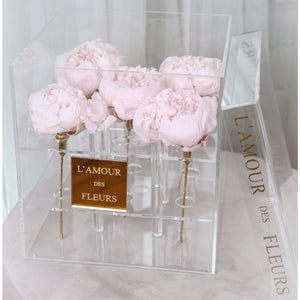 13. The Peony Collection (exclusive)