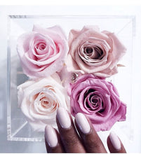 Load image into Gallery viewer, Preserved roses eternal rose Montreal Canada florist fleuriste fleurs flowers valentine's best rosebox boite a fleurs Quebec