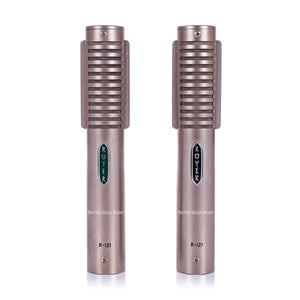 Royer R-121 Stereo Pair Ribbon Microphone Mic