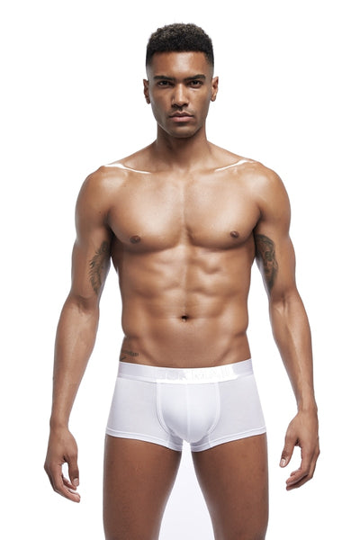 Boxer homme Modal Mens Underwear Boxers U Convex Sexy Male Underpants men boxer Panties Shorts