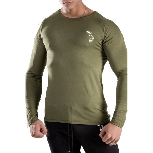 Mens spring Autumn pullover Fashion leisure sportswear gyms Fitness Hoodies Sweatshirts clothing cotton tracksuit