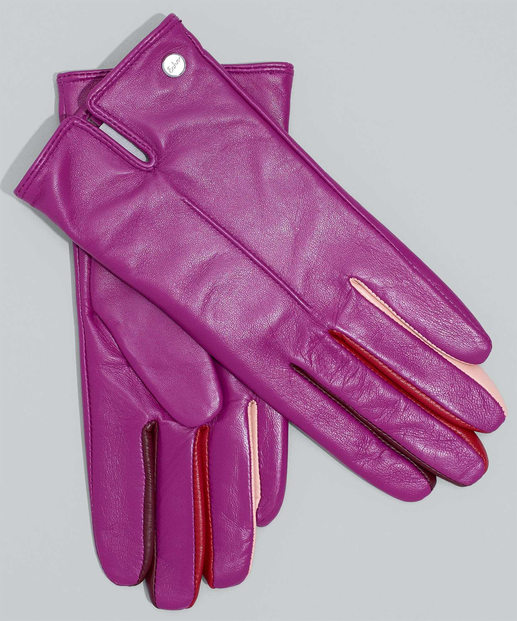 Indian Rose - Leather Colorblock Fourchette Glove