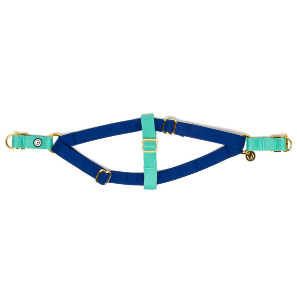Blue-Seafoam Step-In Harness