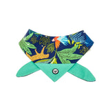 Jungle Nights Bandana