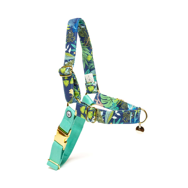 Jungle Nights No-Pull Harness