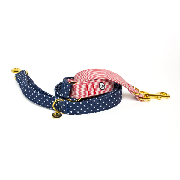Stars and Stripes Convertible Leash
