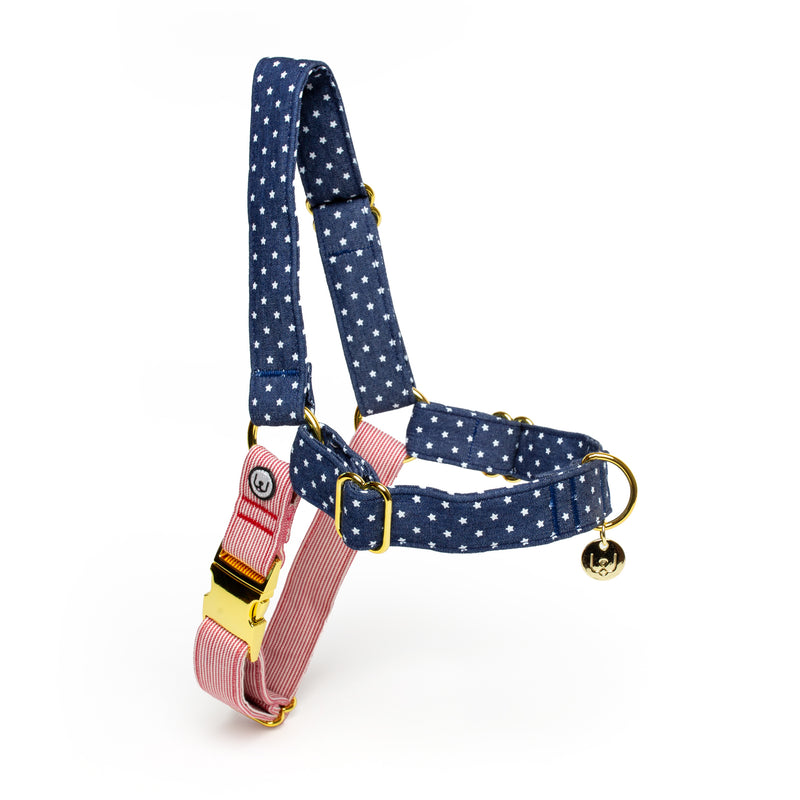 Stars and Stripes No-Pull Harness
