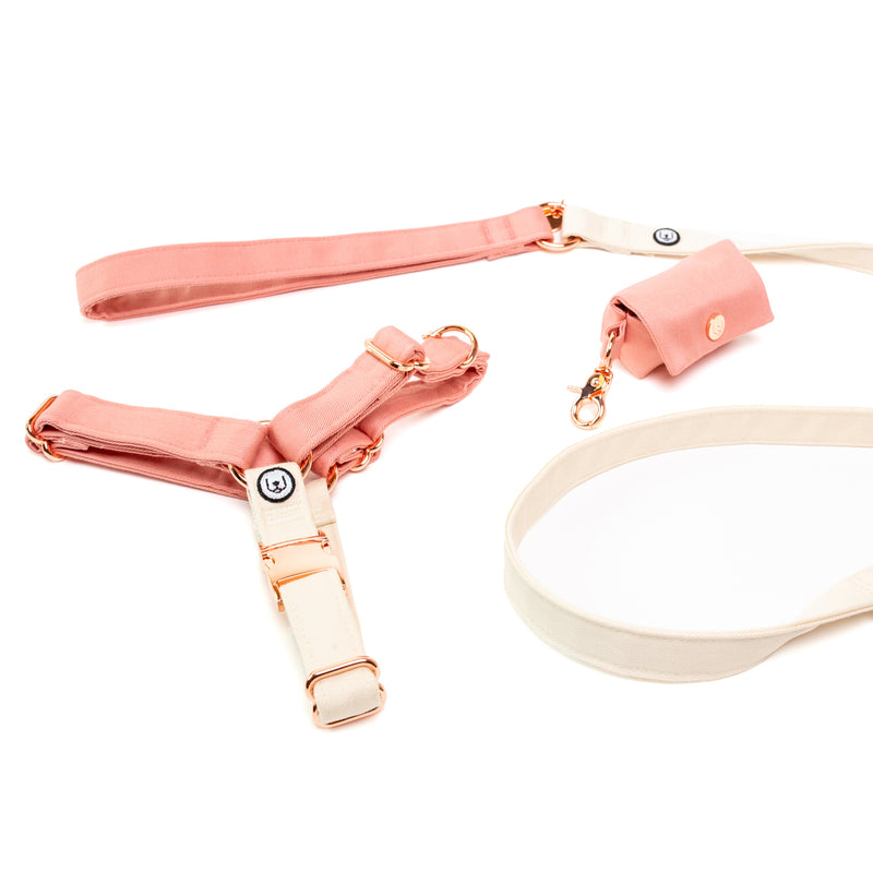 Blossom-Ivory No-Pull Harness Set