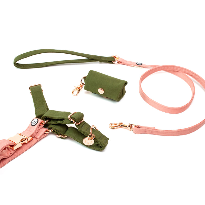 Olive-Blossom No-Pull Harness Set