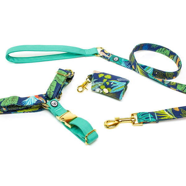 Jungle Nights No-Pull Harness Set