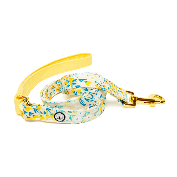 Marigold Leash