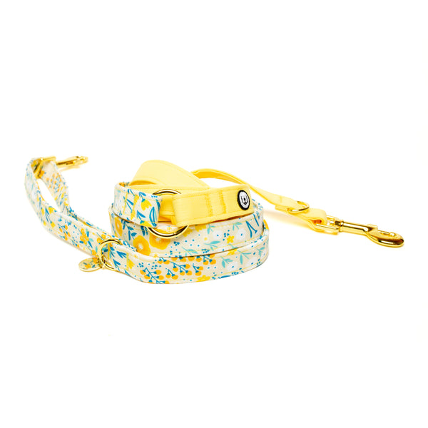 Marigold Convertible Leash