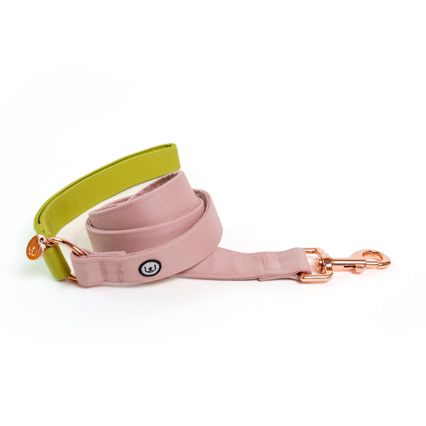 Pickle-Rose Leash