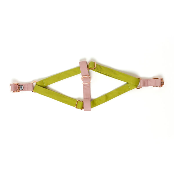 Pickle-Rose Step-In Harness