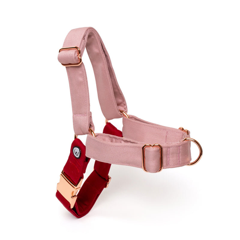 Rose-Ruby No-Pull Harness Set