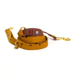 Acorn Pofla Convertible Leash