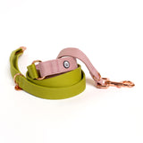 Pickle-Rose Convertible Leash