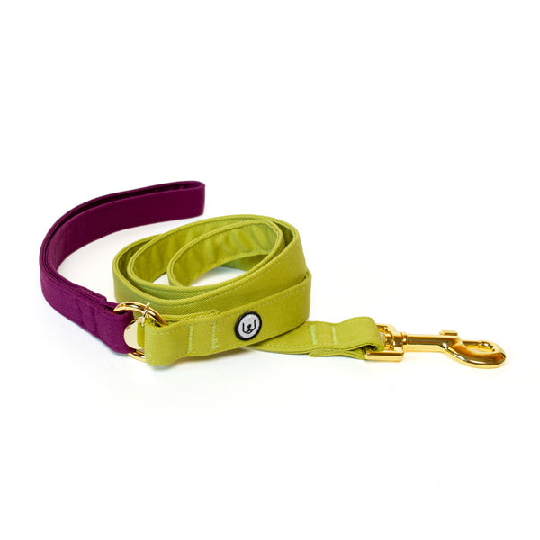 Plum-Pickle Leash